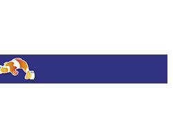 logo-reveton2
